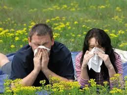 Alergias Rinitis